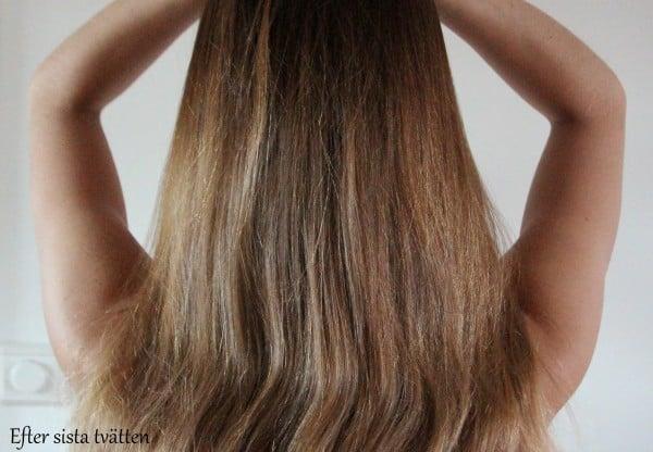 schampo torr hårbotten fett hår