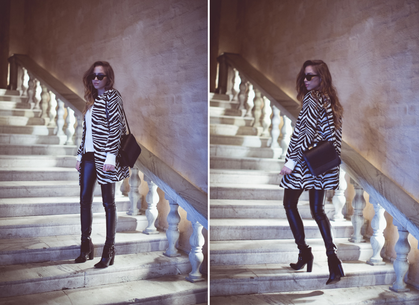 zebra collage-1