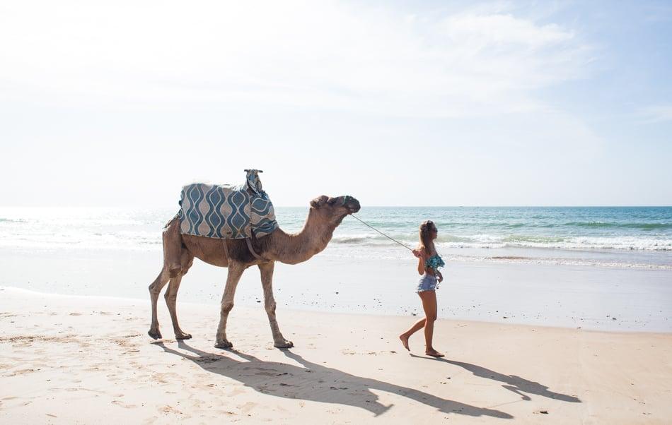 KenzaZouiten_camel-1