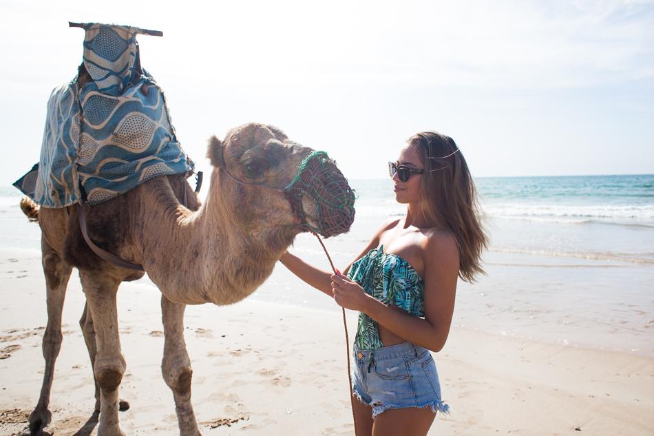 KenzaZouiten_camel-2