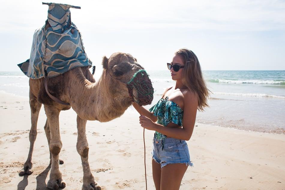 KenzaZouiten_camel-3