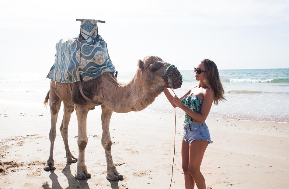 KenzaZouiten_camel-4