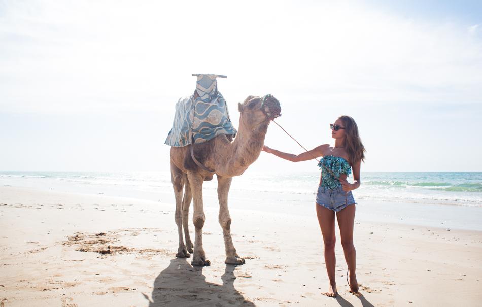 KenzaZouiten_camel-5