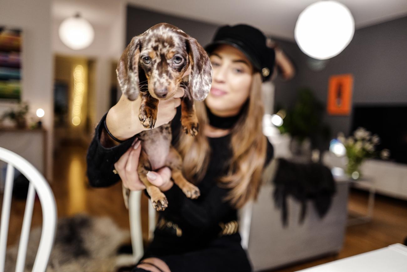 KenzaZouiten_puppy_n-1
